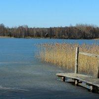 13 марта, озеро (2) :: Юрий Бондер