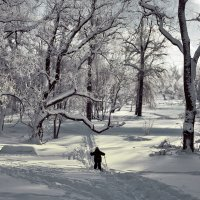запоздалый лыжник :: Владимир Матва