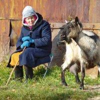 Бабушка и ее козочка :: Валерий Талашов