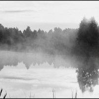 Утро :: Александр Горбачев