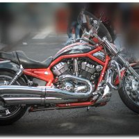 Дни Harley-Davidson в Санкт-Петербурге 2013 :: Sasha Bobkov