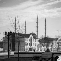 Чечня, Гудермес :: Сахаб Шамилов