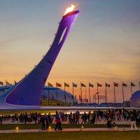 Олимпийский огонь :: Svetlana Larina