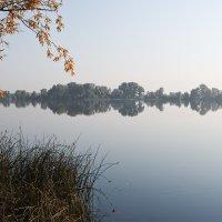Зеркало - река.... :: Андрей Артемьев