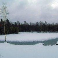 Мартовский снег... :: Ljudmila Korotkova