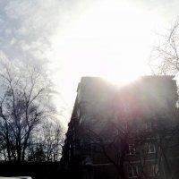Солнце встаёт... :: Ольга Кривых