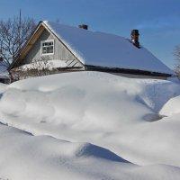 Снежная зима :: Валерий Талашов