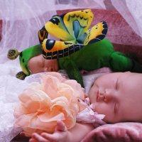 На цветке бабочка :: Светлана Былинович