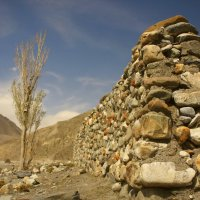 Пейзаж в Гималаях - дорога  Муктинатх :: Анастасия Кононенко