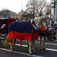 На Дворцовой конная повозка. :: Александр Лейкум