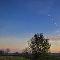 Вечерняя дорога в поле :: Владимир Бегляров
