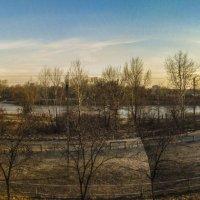 Весна на Журавлевке :: Александр Сальтевский