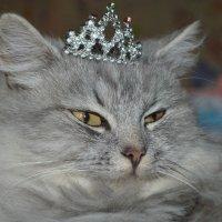 принцесса)) :: Натали Тихонова