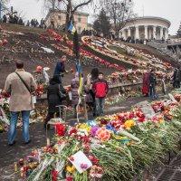 Цветы на Майдане :: Юрий Матвеев