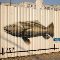 Рыба на заборе :: Екатерина Калашникова