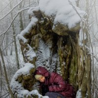 зимняя спячка :: Ирэна Мазакина