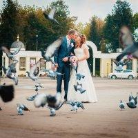 Любовь и голуби :: Олеся Ефанова