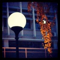 лампа :: Раджив Пирмедов