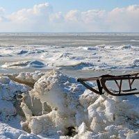 Белое море сейчас :: Владимир Шибинский