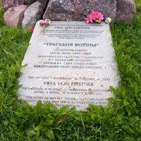 Сологубовка (8) :: Serzhik Kozlov