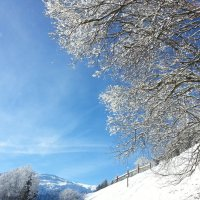 Зима в Австрии :: Анна Головашкина