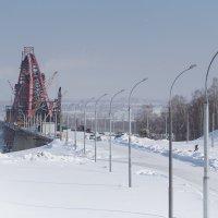Мост строится, детки катаются)) :: Мария Арбузова