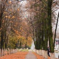 Осень :: Владимира Овчинникова