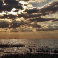 Закат над заливом :: Елена Шторм