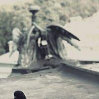 Одиночество :: Елизавета Ковалёва