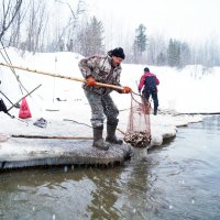 На рыбалке... :: Иван Белоглазов