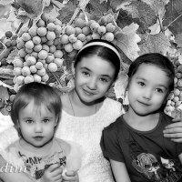 три сестры :: Вадим Куликов