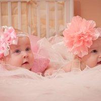 куколки :: Анна Литвинцева