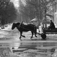 Весна :: Надежда Мартюшева