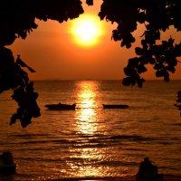 Солнце :: Fil