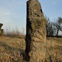 Затерянные среди полей... :: Александр Крылов