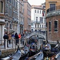 Венеция. Повседневная жизнь :: Лидия Цапко