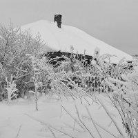 Зима в деревне... :: Александр Никитинский