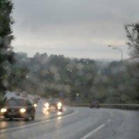 Дмитровское шоссе, дождь :: Константин Беляев