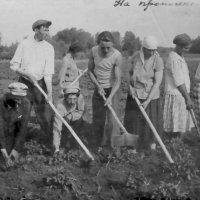 На прополке в с. Харино Омской обл..1933 г. :: Олег Афанасьевич Сергеев