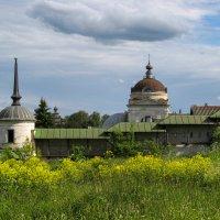 Борисо - Глебский монастырь :: Лариса *