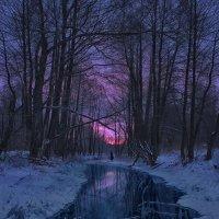 Зимнее утро. Белый Колодезь. :: Кирилл Кондратенко