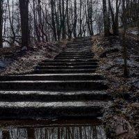 Отражение весны :: Олег Субботин