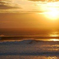 Океан в золоте :: Диляра Баязитова