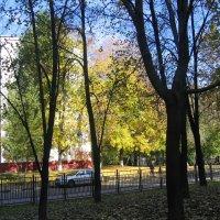 Начало октября. :: Владимир  Зотов