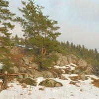 последний снег :: Сергей