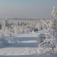 зимняя сказка :: Алена Дегтярёва
