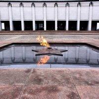 Будет гореть вечно! :: владимир