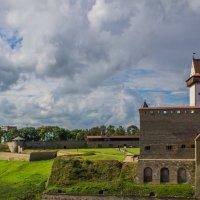 Вид на нарвскую крепость :: Максим Grin