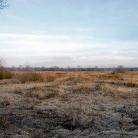 После зимы :: Юрий Бичеров