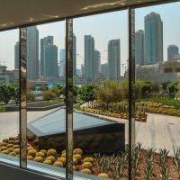 Рамки. Высотки Дубаи. :: Ирина Токарева
